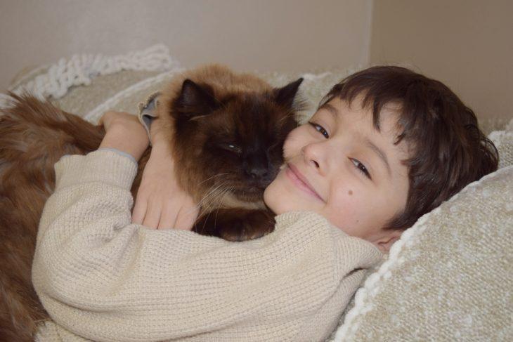 Himalayan cat with a boy
